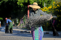 Bagan woman sowing granite chips for road paving